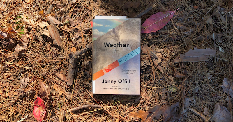 A photo of Weather by Jenny Offill resting on a bed of pine straw.